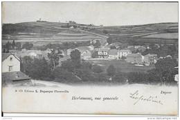 HERBEUMONT ..-- Vue Générale . 1904 Vers MOLENBEEK ( Melle Angèle DELVIGNE ) . Voir Verso . - Herbeumont