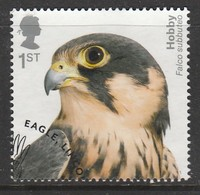 GB 2019 Birds Of Prey 1st Multicoloured SW 4046 O Used - Oblitérés