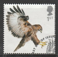 GB 2019 Birds Of Prey 1st Multicoloured SW 4047 O Used - Oblitérés