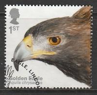 GB 2019 Birds Of Prey 1st Multicoloured SW 4048 O Used - Oblitérés