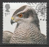 GB 2019 Birds Of Prey 1st Multicoloured SW 4050 O Used - Oblitérés