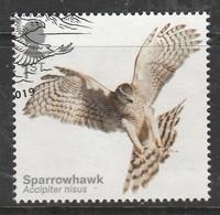GB 2019 Birds Of Prey 1st Multicoloured SW 4051 O Used - Oblitérés