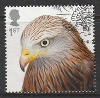 GB 2019 Birds Of Prey 1st Multicoloured SW 4052 O Used - Oblitérés