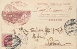 Regno D'Italia 1909 Cartolina Commerciale Per Novara Con Annullo NATANTE ARONA - LOCARNO - 1900-44 Vittorio Emanuele III