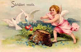 BÉBÉ / ANGELOT Et PIGEONS : VOEUX / HOLIDAYS GREETINGS - CARTE POSTALE LITHOGRAPHIÉE Et GAUFRÉE ~ 1905 (ac063) - Bébés