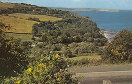 Postcard Luccombe Common Between Shanklin And Ventnor Slogan Cancel PU 1969 My Ref  B13033 - Other