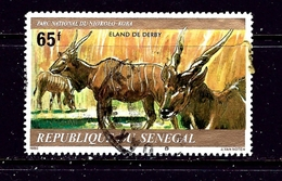 Senegal 525 Used 1980 Animals - Senegal (1960-...)