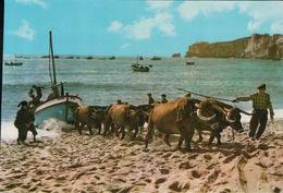 NAZARE Arrasto Dos Barcos - Portugal
