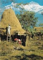 Asie - Népal - Annapurna -  - Cpm - écrite - - Népal