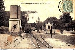 77 . Seine Et Marne . Bray Sur Seine : La Gare . - Bray Sur Seine