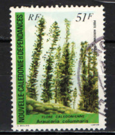 NUOVA CALEDONIA - 1984 - FLORA DELLA CALEDONIA: ARAUCARIA COLUMNARIS - USATO - Posta Aerea