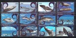 Aitutaki, 2012. [n1187] Marine Fauna - Baleines
