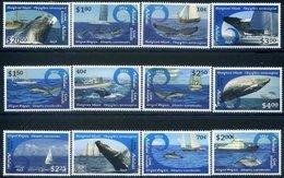 Aitutaki, 2013. [n1188] Marine Fauna - Baleines