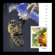 Guinea-Bissau 2019 Mih. 10460 (Bl.1800) Fauna. Bees MNH ** - Guinea-Bissau