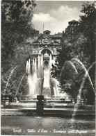 W2594 Tivoli (Roma) - Villa D'Este - Fontana Dell'Organo / Non Viaggiata - Tivoli