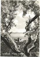 W2597 Bolsena (Viterbo) - Panorama Del Lago Dall'alto / Non Viaggiata - Altre Città