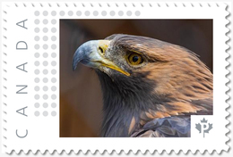 EAGLE = FALCON = BIRD OF PREY = Picture Postage Canada 2019 [p19-04s16] MNH-VF+ - Arends & Roofvogels