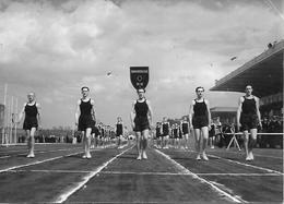 Photo Originale Chantiers De Jeunesse - Peut être à Vichy - Années 1940 - Défilé Bagatelle - 1939-45