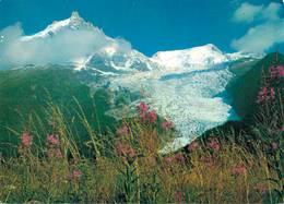 Massif Du Mont Blanc Glacier Des Bossons Et Aiguille Du Midi CPM Ou CPSM - Chamonix-Mont-Blanc