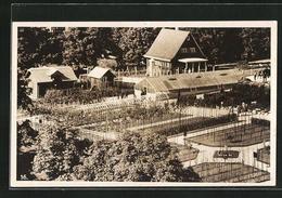 AK St. Gallen, St. Gallische Ausstellung 1927, Gartenanlage - Expositions