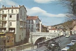 PYRENEES ORIENTALES - 66 - AMELIE LES BAINS - CPSM GF Couleur  Vieux Pont Sur Le Mondoni - Trous De Punaises - France