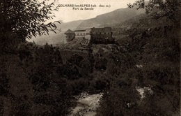 CPA Colmars-les-Alpes Fort De Savoie - Châteaux