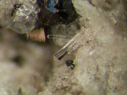 * NICE APATITE Xls, In Den Dellen, Mendig, Eifel, BRD * - Minerals
