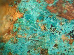 * WROEWOLFEITE Xls, Katzbach Mine, Hönningen, Eifel, BRD * - Minerals