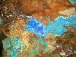 * CYANOTRICHITE Xls, West Goarvi, Bolivia * - Minerals