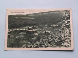 DUBI V Krusnych Horach ( Edit.: ? ) 1927 ( See Photo For Detail ) ! - Tchéquie
