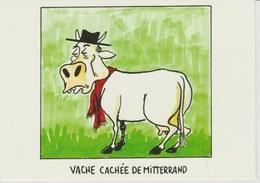 19 / 4 / 311    - VACHE  CACHÉE  DE  MITTERRAND   ( MICHEL CAMBAN -  C P M - Satirische