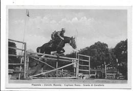 Pinerolo (Torino). Cavallo Manola - Capitano Bacca - Scuola Di Cavalleria. - Cavalli