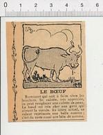 Presse 1922 Humour Animal Boeuf Viande Boucherie Bête De Somme 51D12 - Vieux Papiers