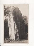 Pouance Menhir De Pierrefite - France