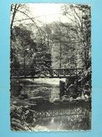 CPSM Schaerbeek Parc Josaphat, Ancienne Propriété  Martha,transformée En Parc Public En 1912 - Schaarbeek - Schaerbeek