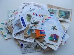 Lot #29 - Lot +200 Vogels WW, Lot Zoals Te Zien Op Foto, Bijna Allen Op Papier - Collections, Lots & Séries