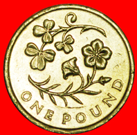 + FLAX AND SHAMROCK: GREAT BRITAIN ★ 1 POUND 2014 NORTHERN IRELAND MINT LUSTER! LOW START ★ NO RESERVE! - 1 Pound