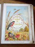 Annie L ODDY Album Marcus Ward And Co  Flower And Feather  Girls Friendly  BRADFORD 1882 - Albums & Collections