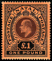 Natal, 1908, £1 Black On Red SG.171 , MNH ** - Unclassified
