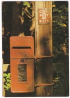 Post Box Near Wroxham, Norfolk, East Anglia - (England) - Post