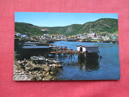 Newfoundland  Petty Harbor    Ref 3292 - Newfoundland And Labrador