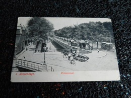 Tram : S' Gravenhage, Prinsessewal, Tramway Tracté Par Des Chevaux   (X7) - Tramways