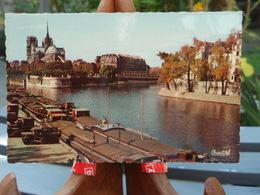 Cpsm   Notre-Dame-de-Paris. Péniches Sur La Seine. - France