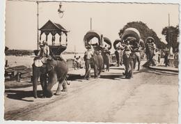 Asie :  Cambodge , Pnompenh , Les  éléphnats En Procession  Religieuse - Cambogia