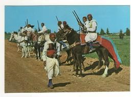 CP20 AFRIQUE TUNISIE Cavaliers Zlass  1536 - Tunisie