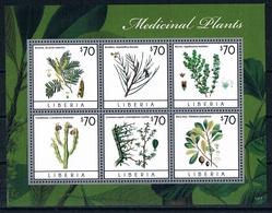 Bloc Sheet Plantes Medicinales Medicinal Plants  Neuf ** MNH  Liberia 2013 - Plantes Médicinales