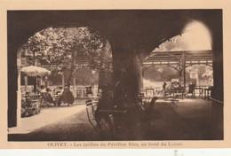 ** 45  ***    ORLEANS  OLIVET Les Jardins Du Pavillon Bleu Au Bord Du Loiret -neuve TTB - France