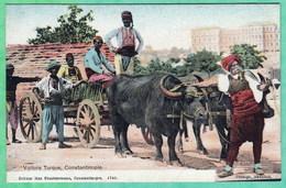 TURQUIE - CONSTANTINOPLE - VOITURE TURQUE - Turquie