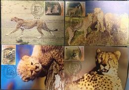 Maxi Maxicard Maxicards Of W.W.F. WWF Iran 2003 : Cheetah / Cat - FDC