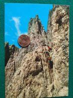 CLUB ALPINO ITALIANO Rifugio Passo Santner Con Timbro - Mountaineering, Alpinism